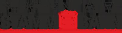 Bürgerinitiative STAMMBAHN Logo